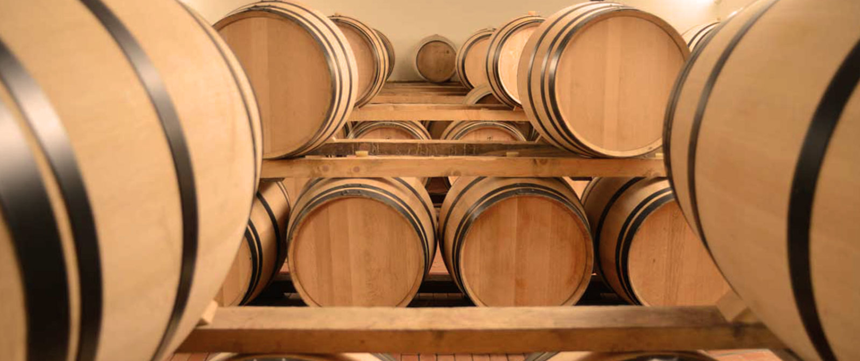 WINE TASTING FONTODI