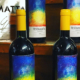 WINE TASTING TESTAMATTA - Bibigraetz